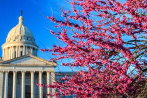 Sign up for legislative action alerts