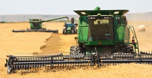 Wheat harvest in Oklahoma